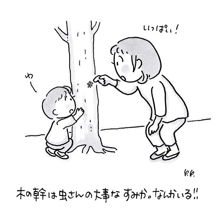 木の幹かんさつ