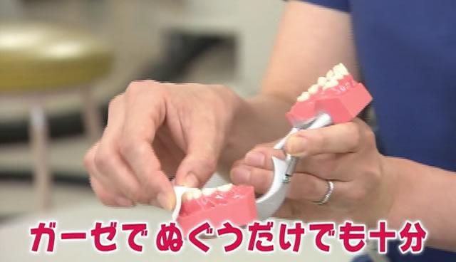 歯磨きの練習の仕方 ガーゼでぬぐうだけでも十分