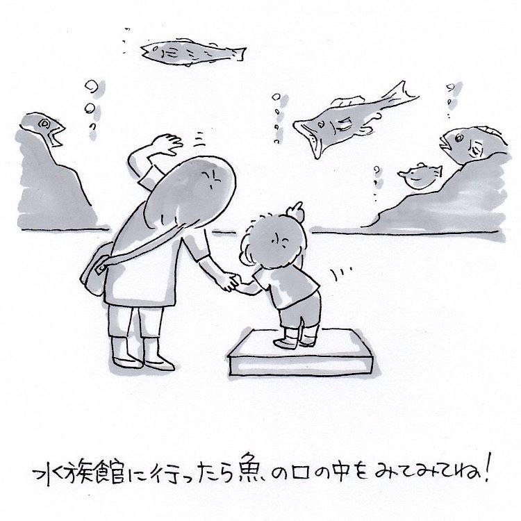 お魚口の中観察