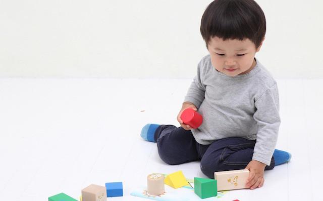 ワンワンとうーたんの知育おもちゃで遊ぶ子ども