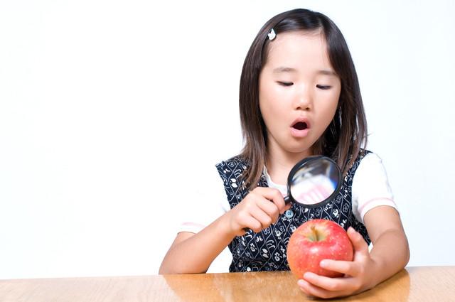 りんごを虫眼鏡で調べる女の子