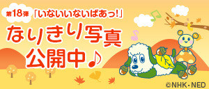 banner_inabaa18