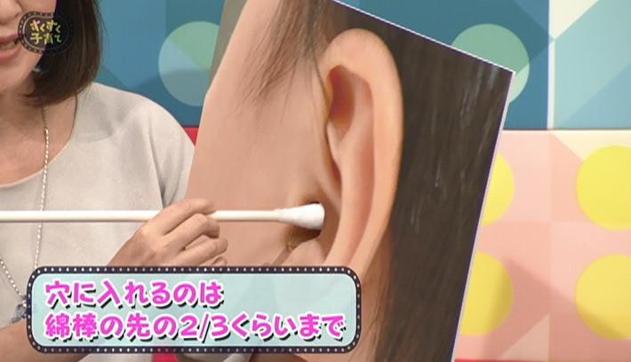 歳 掃除 1 耳
