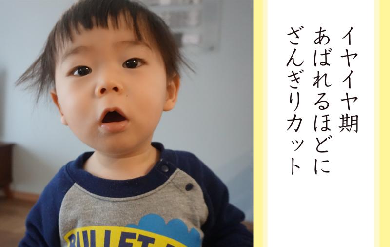 senryu_iyaiya01