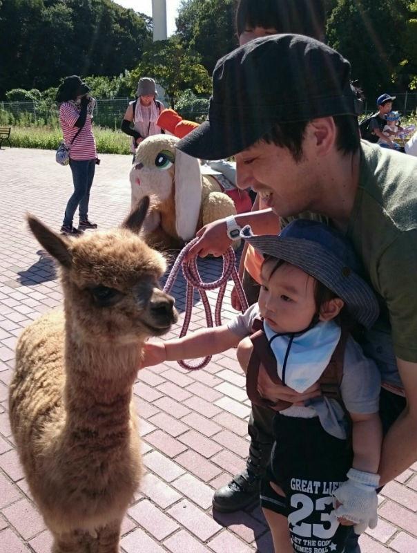 5pre_zoo11