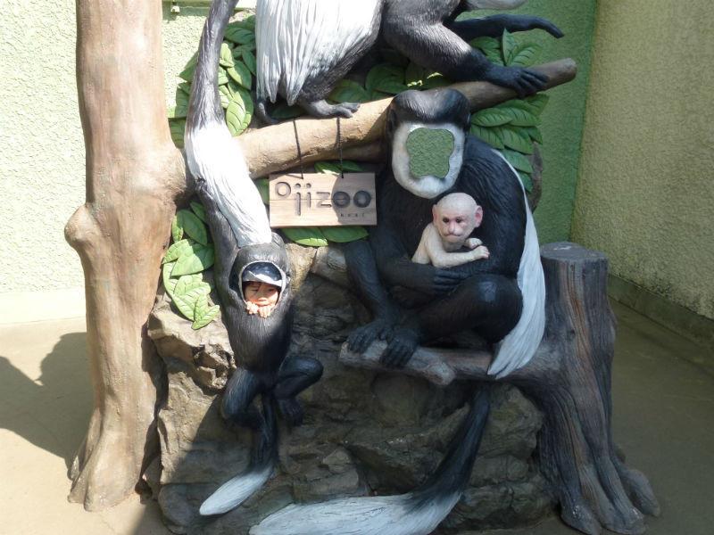 5pre_zoo33